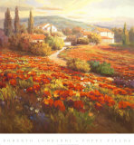Red Poppy Hill Prints by Roberto Lombardi