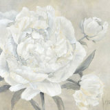 Paeonia II Prints by Jettie Roseboom