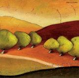 Roads II Láminas por Stacy Dynan