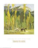 A través de los Aspens Láminas por Francis Livingston