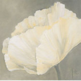 Poppy in White III Prints by Jettie Roseboom