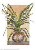 Arts and Crafts Orchids, Angraecum Supurbum Prints by Sally Robertson