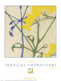 Tropical Impressions III Prints by  Georgie