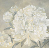 Paeonia I Prints by Jettie Roseboom