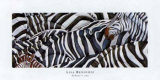 Zebras's Sea Prints by LISA BENOUDIZ
