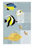Peixes tropicais Posters
