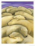 Texture, Sleeping Polar Bears Affiches