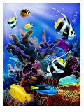 Récif corallien Affiches