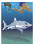 Shark Swimming Beneath Swimmers Poster
