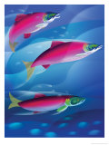 Salmon Posters