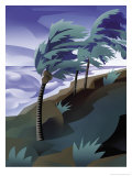 Palm Trees Bending in the Wind of a Hurricane Posters
