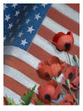 Poppies and American Flag Poster