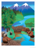 A View of a Beaver Dam in a Mountain Stream Posters