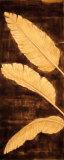 Triptyque de palmier tropical Affiches par David Parks