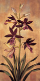 Burgundy Orchid Art by Jill Deveraux