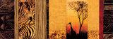 African Plains Kunstdruck von Chris Donovan