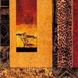 African Studies I Kunstdruck von Chris Donovan