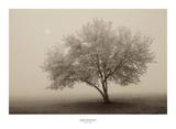 Forever Spring Prints by Igor Svibilsky