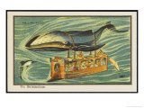 Whale-Bus Giclee Print by Jean Marc Cote