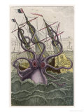 Kraken Attacks a Sailing Vessel Reproduction procédé giclée par Denys De Montfort