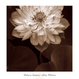 Lotus Welcome Print by Rebecca Swanson