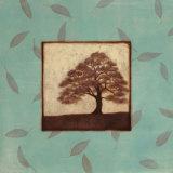 Oak Prints
