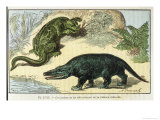 An Iguanodon and a Megalosaurus of the Cretacean Era Giclee Print by A. Demarly