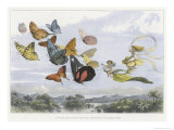 The Fairy Queen Takes an Airy Drive in a Light Carriage Giclee Print by Richard Doyle