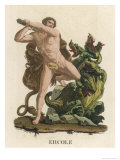 Hydra Suffering at the Hands of Herakles Giclee Print by R.k. Bonatti