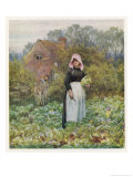 Picking Vegetables in an English Vegetable Garden Giclee Print by Helen Allingham
