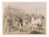 Race Meeting on a British Station Giclee Print by Captain G.f. Atkinson