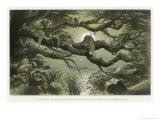 Fairies Asleep in the Moonlight Lámina giclée por Richard Doyle