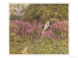 Girl Gathering Sticks in Kent Walks Through a Mass of Foxgloves Giclee Print by Helen Allingham