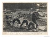 Don Sea Serpent Giclee Print by F. De Haanen