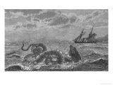 "The ""Sea-Serpent"" Seen at Gloucester Bay Boston Massachusetts on Several Occasions Giclee Print by N. T. Gibson"