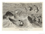 Witches Frolicking in the Waves Giclee Print by George Cruikshank