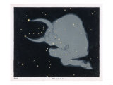 The Constellation of Taurus the Head Neck Shoulders and Forelegs of a Horned Bull Giclee Print by Charles F. Bunt