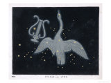 The Constellation of Cygnus, a Flying Swan, and Lyra, That of an Ancient Greek Lyre Giclee Print by Charles F. Bunt