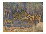 Equus Burchelli Burchell&#39;s Zebra Giclee Print by Louis A. Sargent