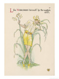 Narcissus Giclee Print by Walter Crane