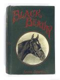 Black Beauty Giclee Print by Winifred Austen