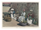 Fruit Vendors in Rio Giclee Print by Gillot