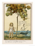 I Had a Little Nut Tree Nothing Would It Bear Giclee Print by Eleanor Vere Boyle