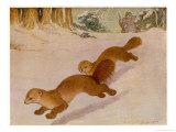 Sable Being Hunted for Their Valuable Fur Giclee Print by Louis A. Sargent