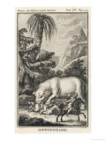 An Extraordinary Depiction of a Hippopotamus Savaging Hunters in an Exotic Landscape Giclee Print by G. Duclos