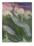 Narwhals Swimming Giclee Print by Louis A. Sargent