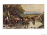 Cattle Returning to the Farm from Pasture Giclee Print by Birket Foster