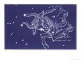 Taurus Giclee Print by Roberta Norton