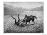 Feral Child Playing with a Wolf Cub 4 of 5 Giclee Print by Harry B. Neilson