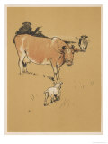 White Bulldog Approaches a Docile-Looking Cow in a Field Giclee Print by Cecil Aldin